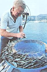 что такое технопланктон в рыбной ловле